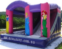 Fairy_Slide_front_small